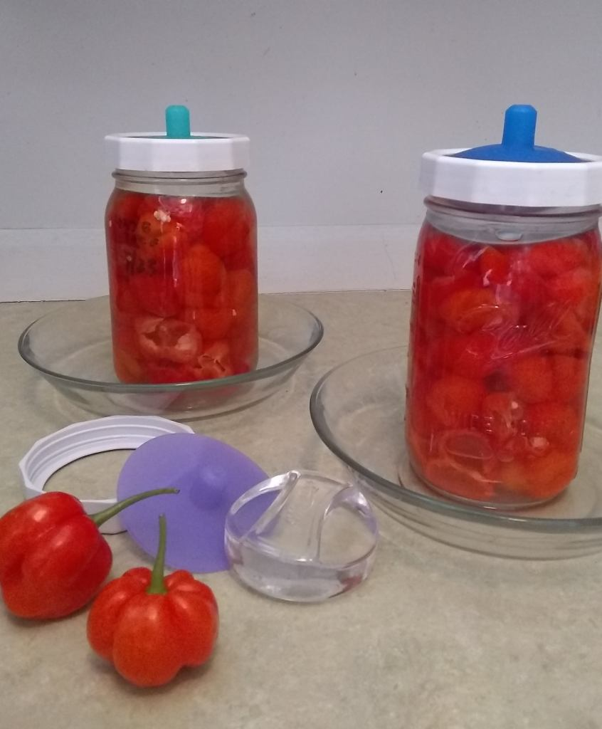 Pickled pimento peppers